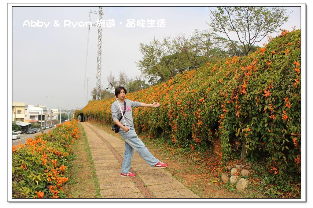 newIMG_9524.jpg