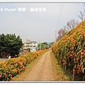 newIMG_9580.jpg