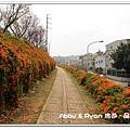 newIMG_9581.jpg