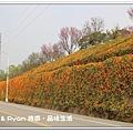newIMG_9595.jpg