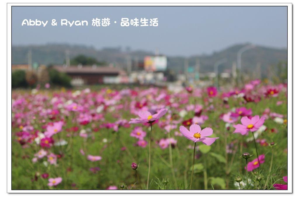 newIMG_0827.jpg