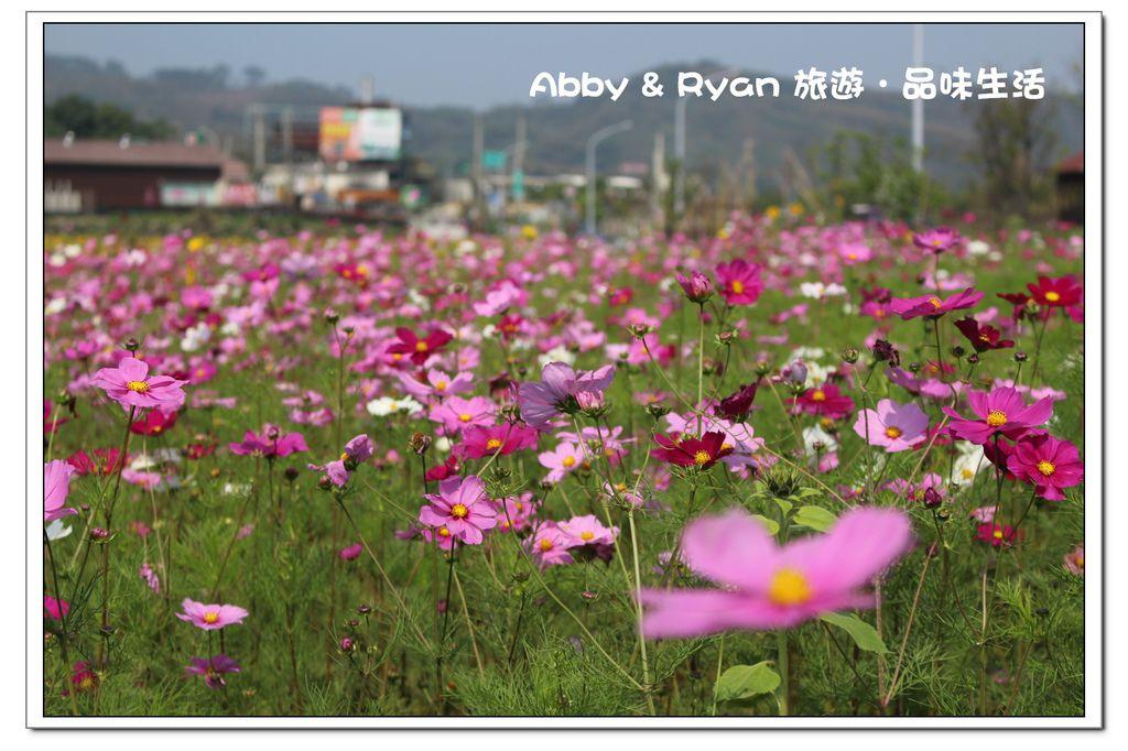 newIMG_0829.jpg