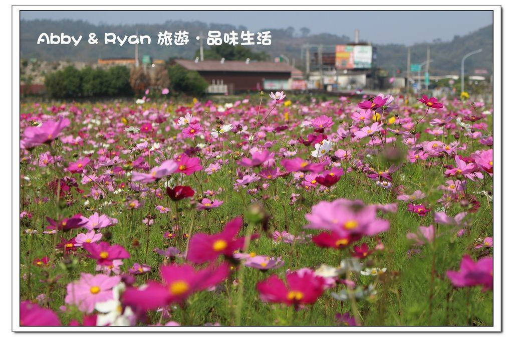 newIMG_0830.jpg