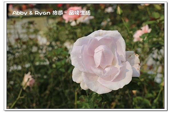 newIMG_3193.jpg