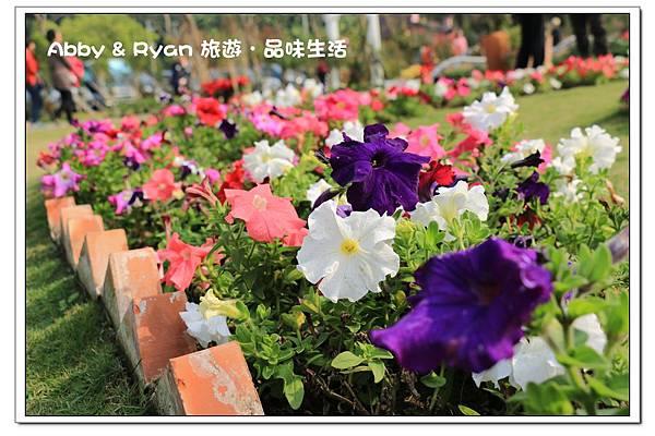newIMG_3202.jpg