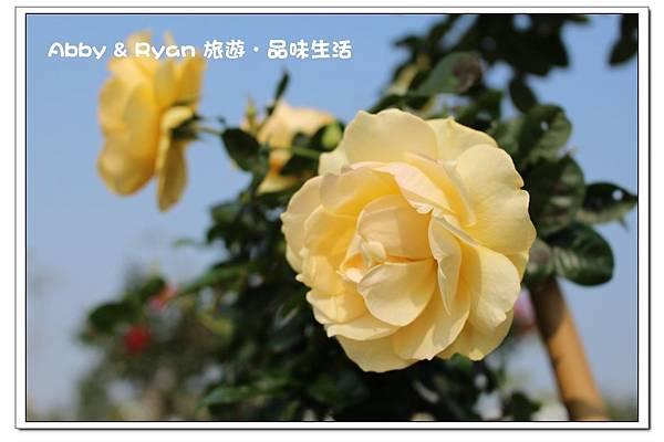 newIMG_4061.jpg