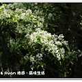 newIMG_2329.jpg