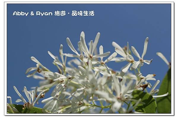 newIMG_2369.jpg
