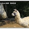 newIMG_7108.jpg