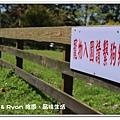newIMG_2436.jpg