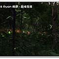 newIMG_8121.jpg