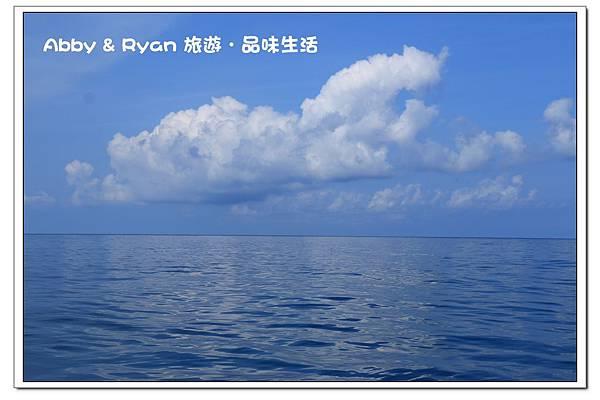newIMG_8967.jpg