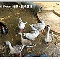 newIMG_8415.jpg