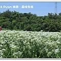 newIMG_5484.jpg