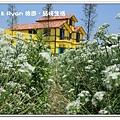newIMG_5505.jpg