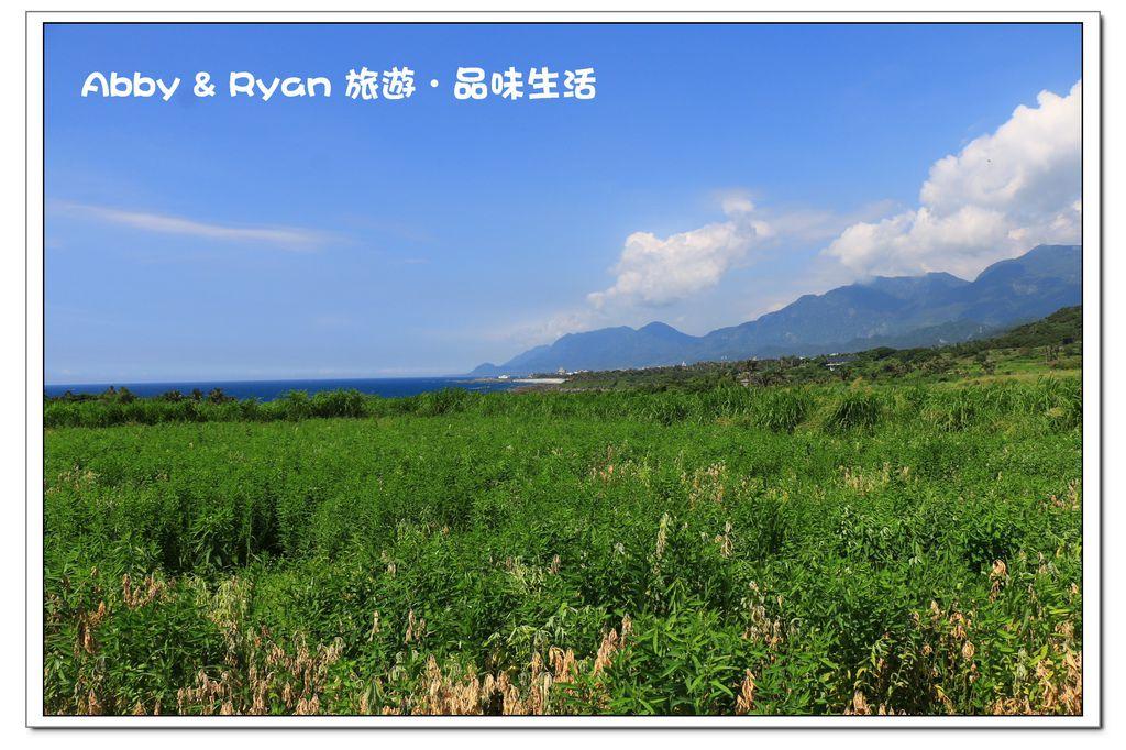 newIMG_9259.jpg