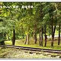 newIMG_5156.jpg