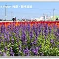 newIMG_7804.jpg