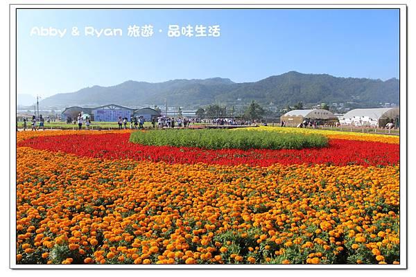 newIMG_7809.jpg