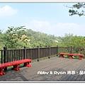 newIMG_8422.jpg