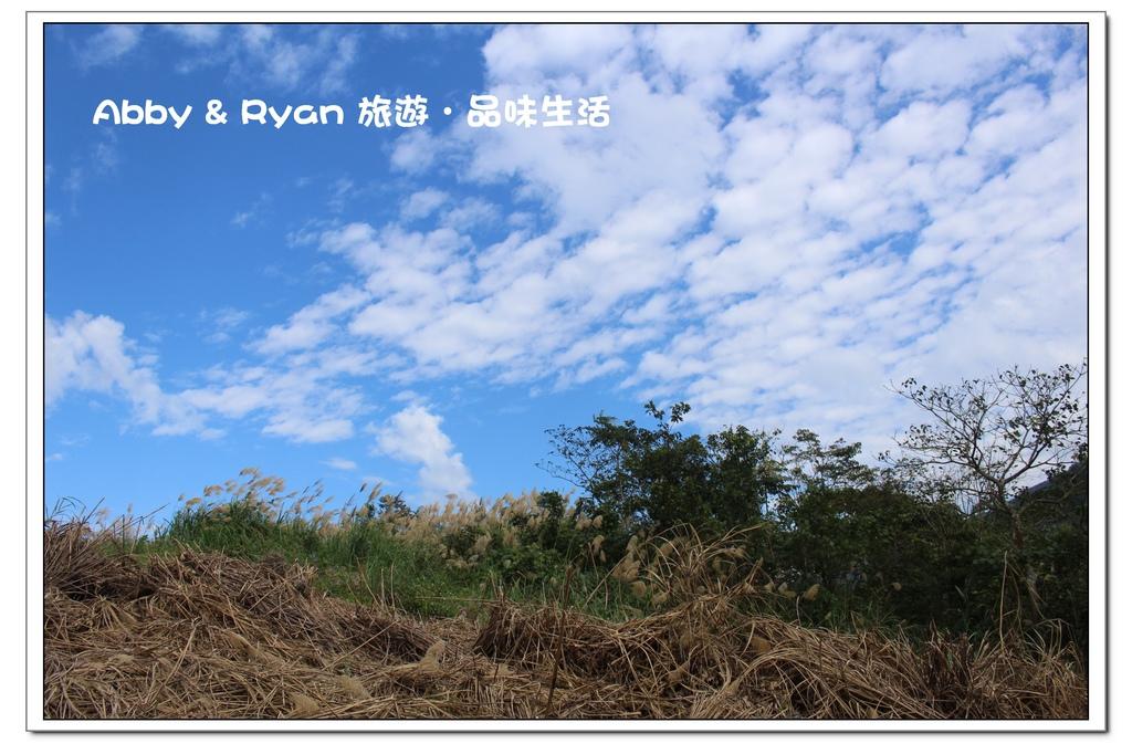 newIMG_0700.jpg