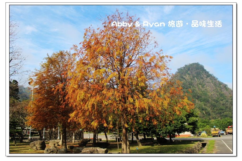 newIMG_4741.jpg