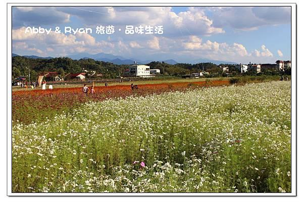 newIMG_9348.jpg