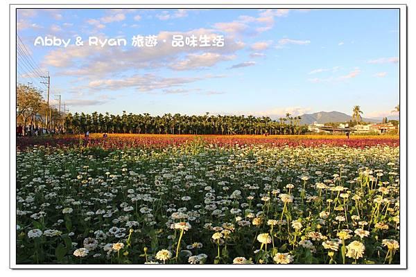 newIMG_9484.jpg