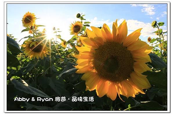 newIMG_3149.jpg