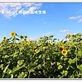 newIMG_9376.jpg