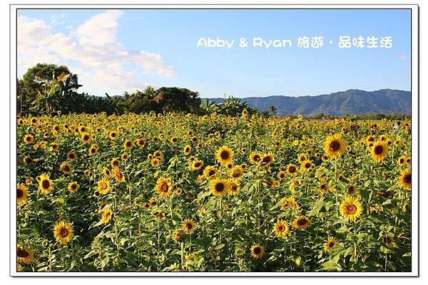 newIMG_9383.jpg
