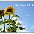 newIMG_9406.jpg