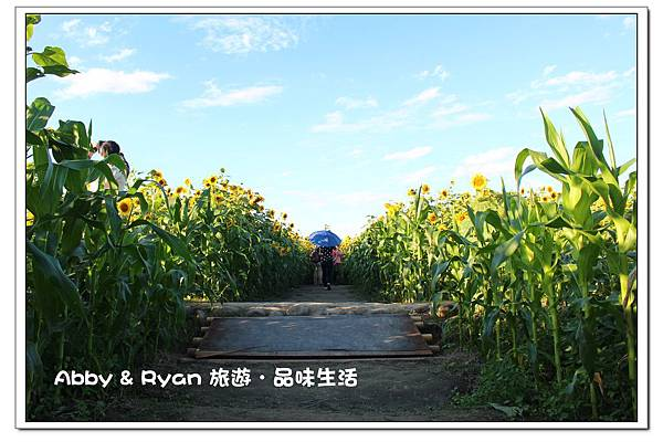 newIMG_9414.jpg