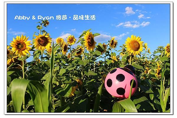newIMG_9426.jpg