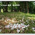 newIMG_2348.jpg