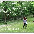 newIMG_6891.jpg