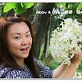 newIMG_6900.jpg