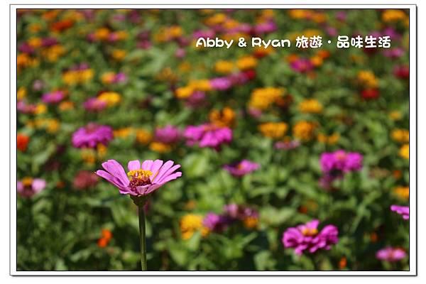 newIMG_5616.jpg