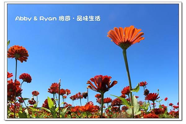 newIMG_5635.jpg
