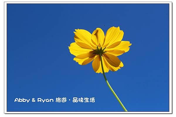 newIMG_5647.jpg