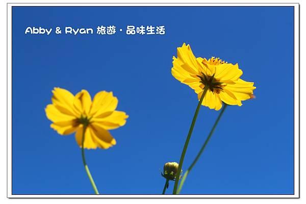 newIMG_5648.jpg