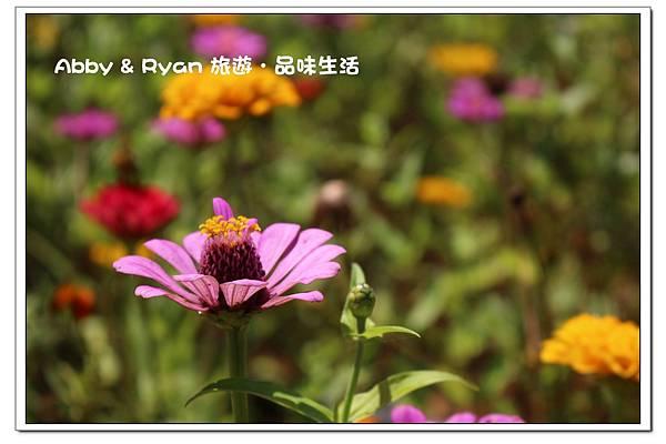 newIMG_5662.jpg