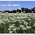 newIMG_5406.jpg