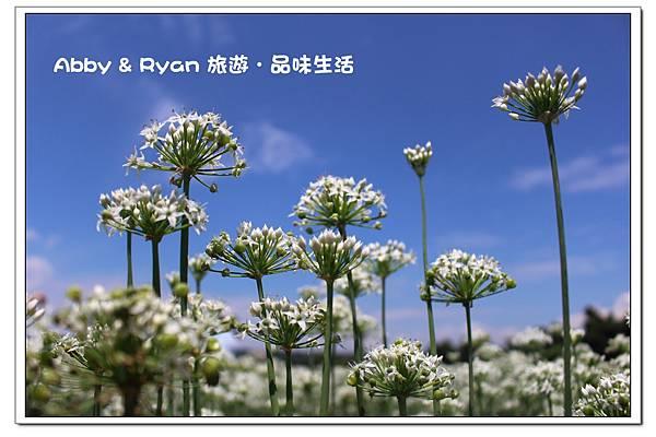 newIMG_5408.jpg