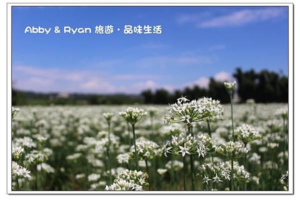 newIMG_5410.jpg