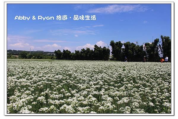 newIMG_5411.jpg