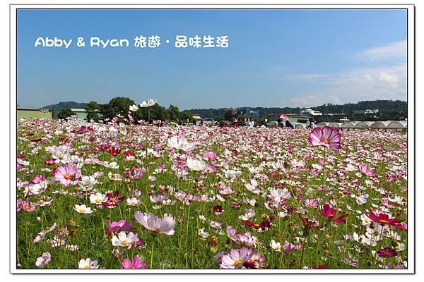 newIMG_7801.jpg