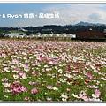 newIMG_7806.jpg