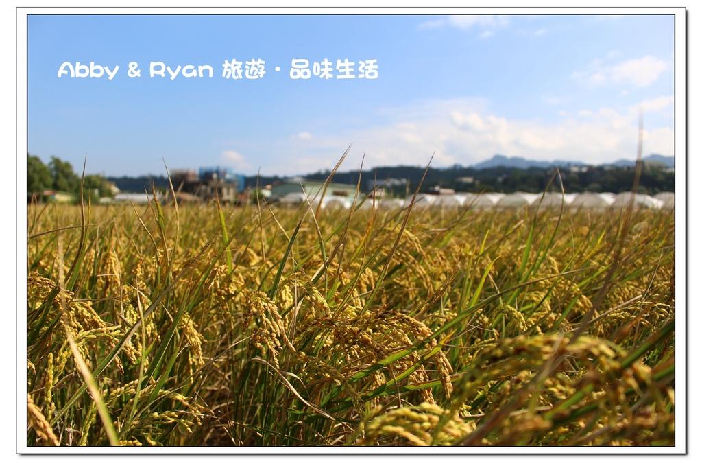 newIMG_7812.jpg