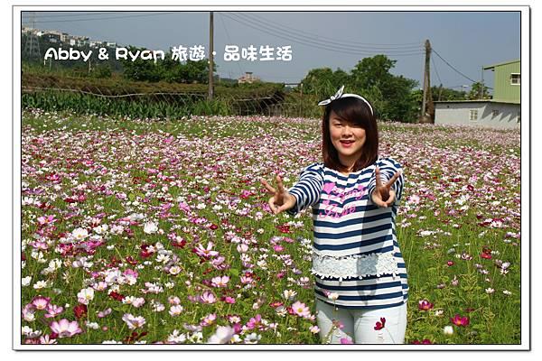 newIMG_7816.jpg